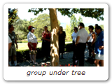 group under tree
