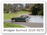 Bridges burnout 2210-9272